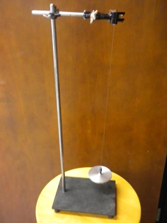 Rotary disk pendulum